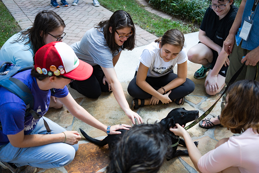 group of students petting support dogs on campus
