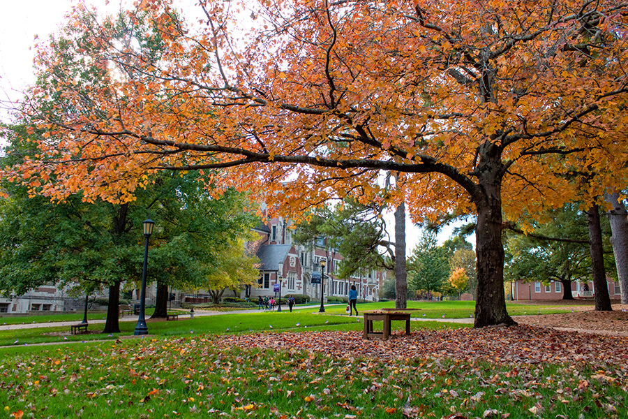Campus in fall color