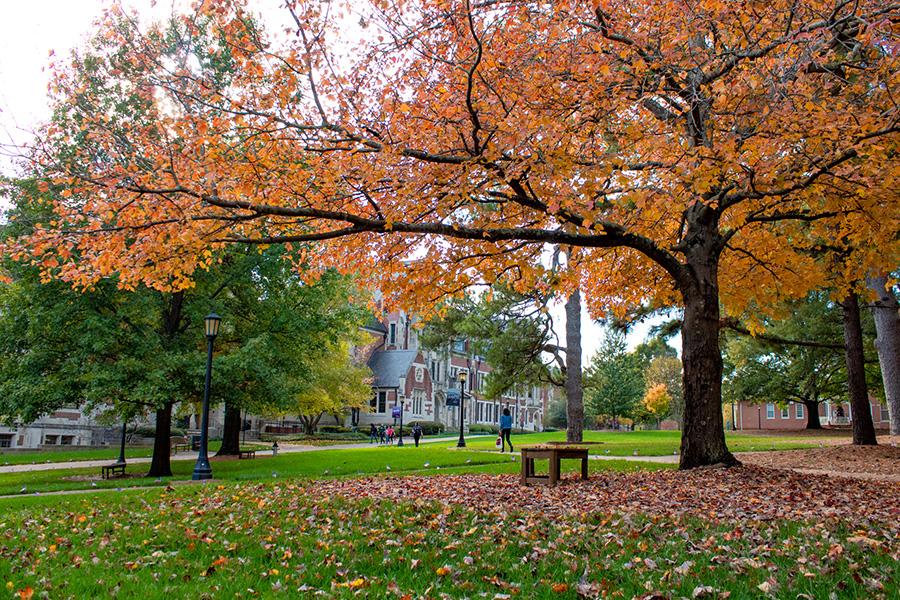 campus quad in fall