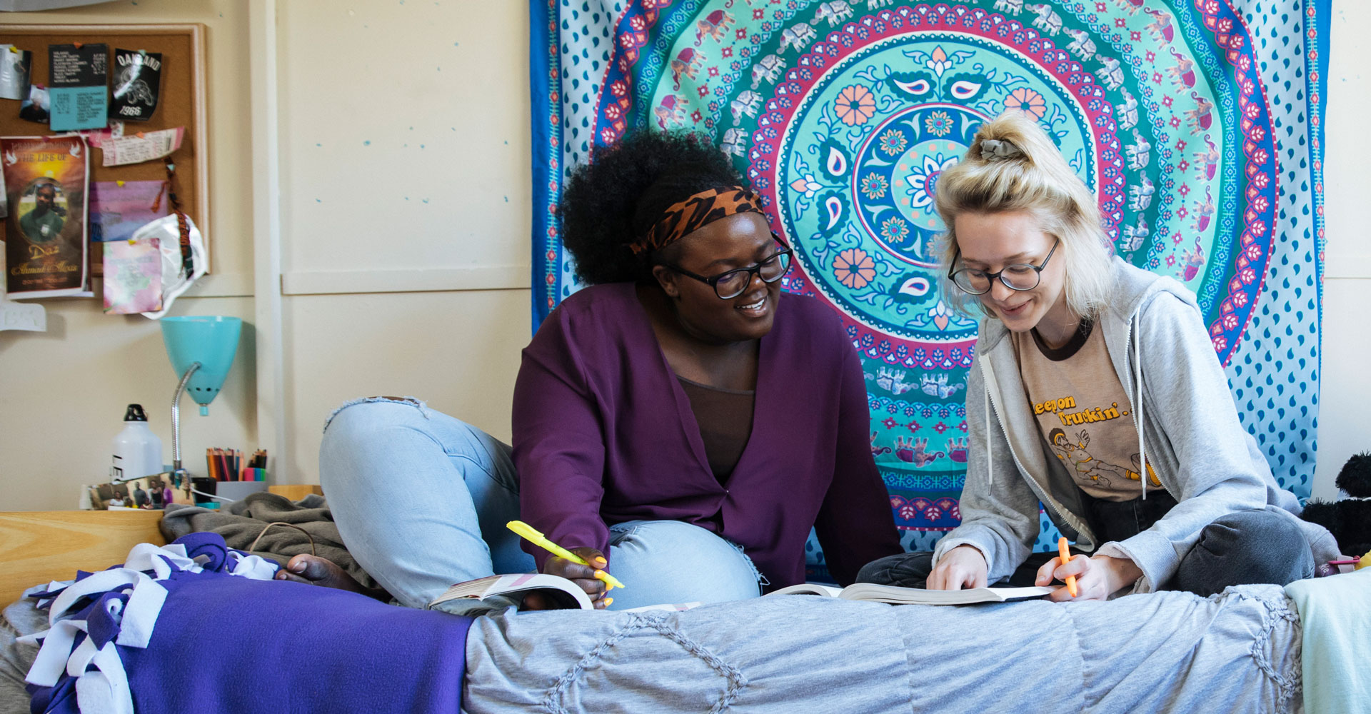 two students studying in a dorm room