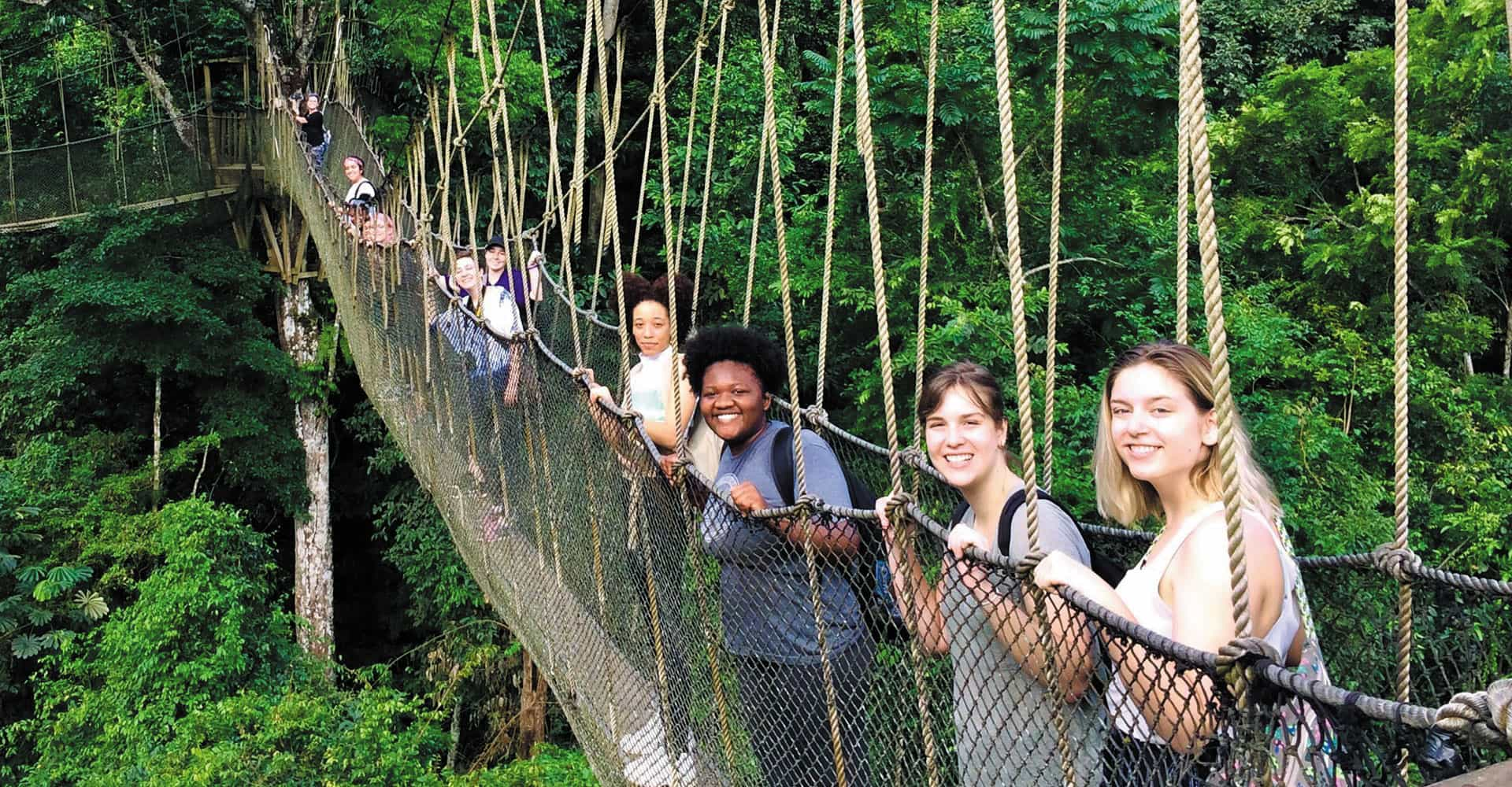 A row of students on a rope bridge.